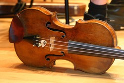 The Pedrazzini violin